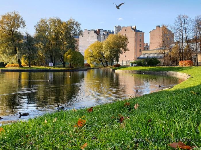 осень в Санкт-Петербурге фото